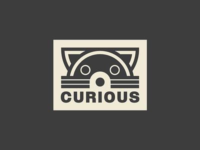 Raccoon animals face branding logo raccoons curious