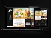 Website concept for Zlaty Bazant