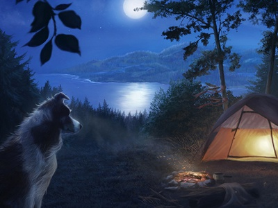 Home is where the Heart is dog moon nature light moonlight illustration digital art trees tent campfire