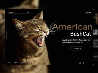 Pecko ui web design