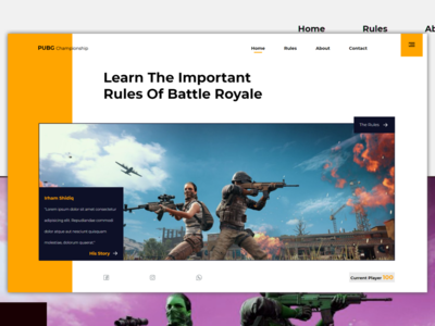 PUBG battle royale pubg webdesign ux design uidesign ux ui javascript bootstrap css html