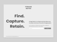 Holding Page Wireframe