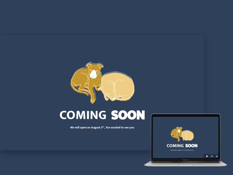 Daily UI :: 048 Coming Soon coming soon template ux illustration branding business xd ui daily 100 challenge web design dailyui