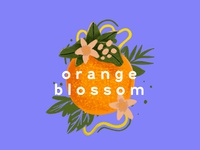 Orange Blossom Illustration