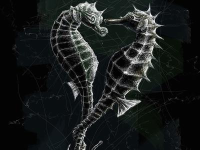 Seahorses | Black Ocean Collection sea horse seahorse sketch ocean illustration black