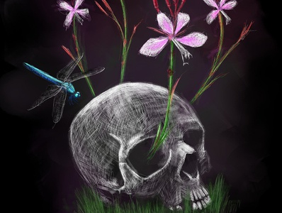 Death is Not the End | Competition Entry flowers dragonfly skull coloured pencil black sketch illustration