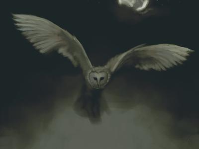#Owltober2020 barnowl bird snowowl owl painting night fog owltober2020 owltober