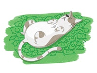 CAT NAP$