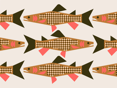 Yellowstone Cutthroat Trout nature wildlife spots gills fins national park yellowstone illustration fish trout