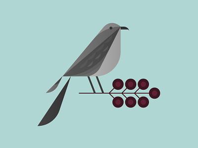 Mockingbird nature cranberry usa tree branch berry illustration bird tennessee mockingbird