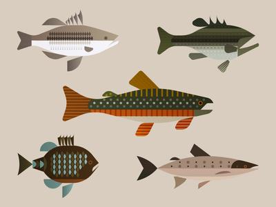 Fish together