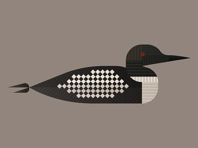 Loon nature illustration bird duck loon minnesota mn