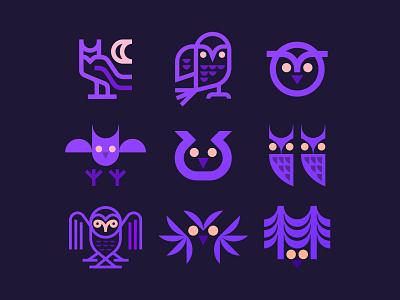 Owls illustration icon bird owl