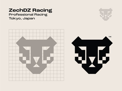 ZechDZ Racing