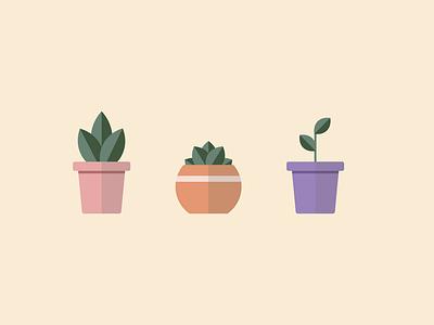 Plants in Pots illustrator design minimal modern pastel vector leaf succulent flower plant pot flat illustration