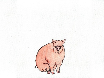 That's All Folks watercolor aquarell animal illustration animal art animal editorial illustration illustration character design piggy pig