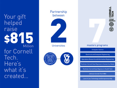 For Donors layout design adobe illustrator monochrome blue and white minimalist infographic