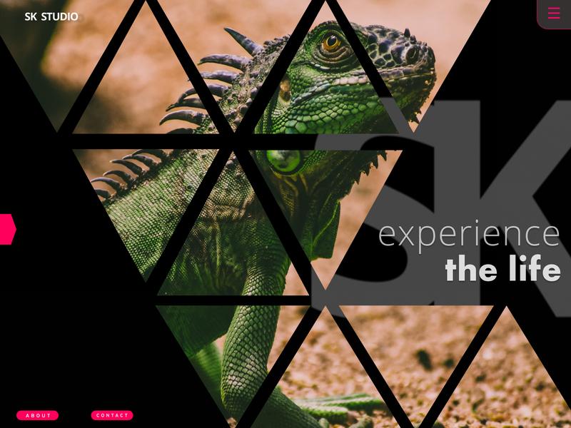 SK STUDIO web vector logo icon typography react framerx front-end pattern webdesign design photography portfolio principle figma uidesign ui design ui