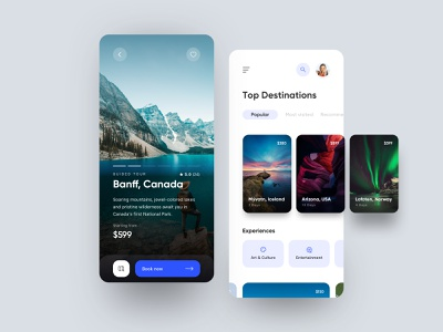 Travel Booking App web design interaction ui ux design dailyui animation app clean branding illustration mobile booking travel canada iceland usa norway experience