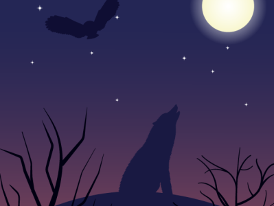 Wolf Silhouette stars wild animal wildlife night forest owl wolf vector illustration vector illustration