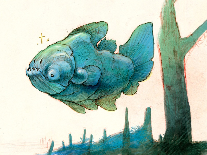 Bull coelacanth fish sketch illustration