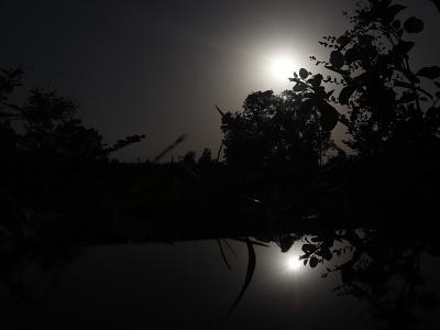moon light  moon light wall