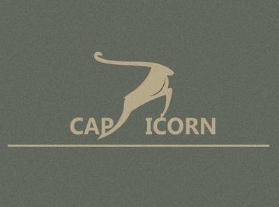 Capricorn logo design logo minimal vector logodesign typography branding design illustration