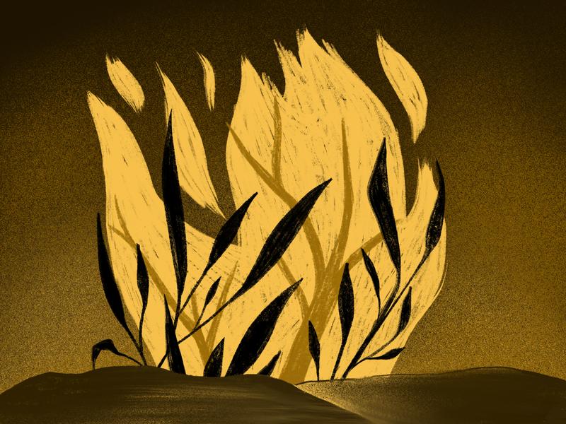 Wild illustrative botanical procreate drawing inktober2019 inktober illustration burning texture branch tree leaf leaves flame burn fire wildfire wild