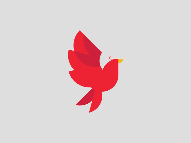 pheonix identity brand identity design branding fly flying circle illustration fire vector circles icon logo flight bird red pheonix