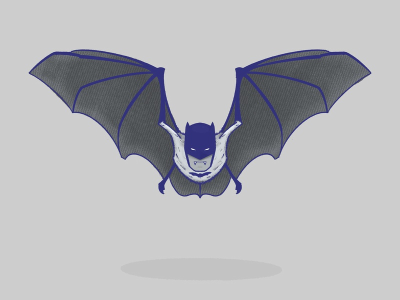 batman character fuzzy ipadpro illustration knight dark dark knight dc universe dc comics comic comics dc vampire man bat batman