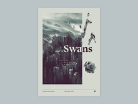 Gig poster project - Swans