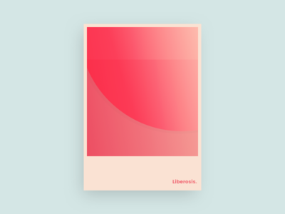 Liberosis -- 12 whatever poster minimal layout design colour
