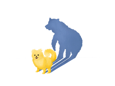 My Little Bear colour animals new shadow puppy spirit animal procreate illustration bear dog pomeranian