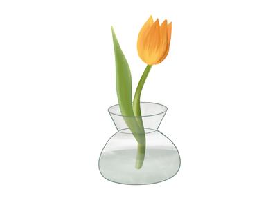 Tulip Sundays dutch procreate design illustration vase flower tulip
