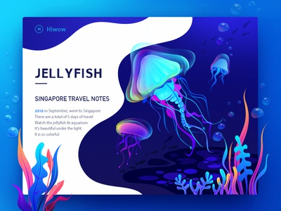 Jellyfish illustration card graphic app ui design singapore colors landing page oceans blue and pink follower banner web design jell yfish water color ocean hiwow illustration