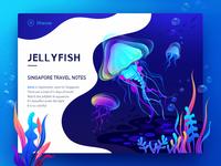 Jell yfish illustration