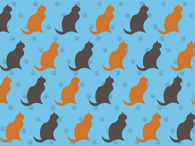cats pattern flat adobe illustrator branding design illustrator flatdesign vector illustration
