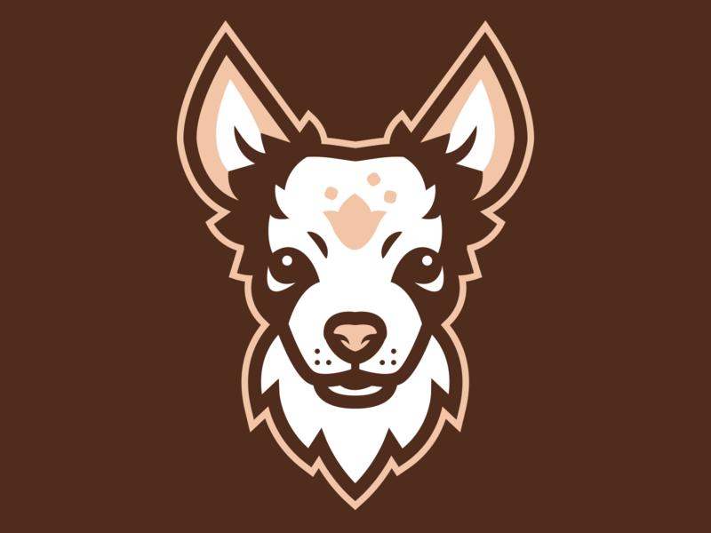 Uzzy The Dog sports branding apparel mascot character design sports design logo sports logo mascot design illustration branding