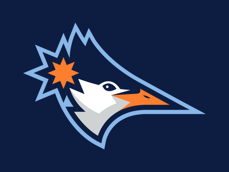 Tampa Terns Concept apparel baseball sports branding design sports design logo sports logo mascot design illustration branding