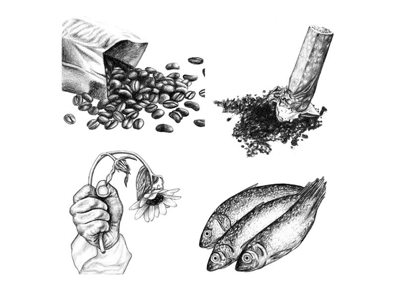 Men's Health Bulletin - March 2016 art drawing editorial illustration food graphite magazine illustration magazine mens health