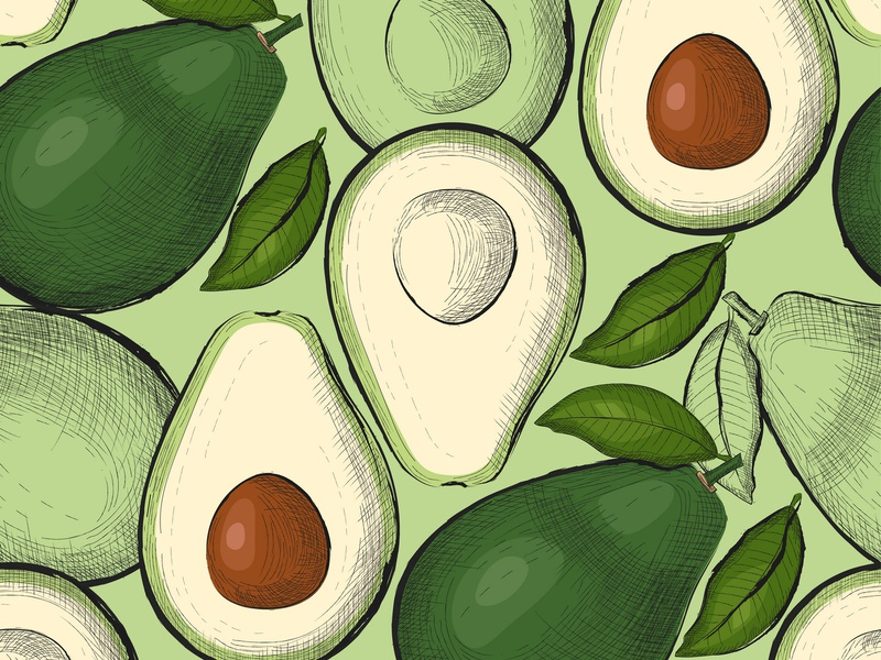 avocado seamless pattern in sketch style delicious juicy summer vegetarian element drawing raw organic avocado pattern avocado recreation pattern seamless hand drawn engraving backdrop design background illustration vector