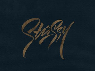 Stüssy stussy graffiti каллиграфия леттеринг illustration typography logotype logo brushpen lettering calligraphy