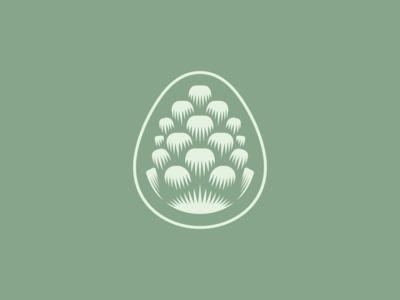 Pinecone Mark illustration wood sage minimal simple green icon logo design nature pine pinecone