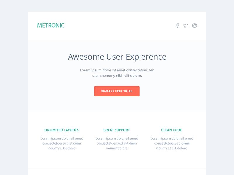 Metronic Responsive Admin Dashboard Template Email Template By - Email dashboard template
