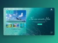 Catamaran Agency - Homepage ocean ship visual design charter homepage luxurious luxury sailing ships training renting booking travel caribbean turquoise sea web design uiux agency catamaran