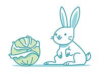 Kabbage Rabbit