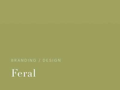 typography development design website typography