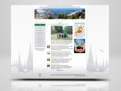 Site for Tigirek sitedesigner yoursite corporatestyle branding identity graphicdesigner webdesigner graphicdesign design site web webdesign