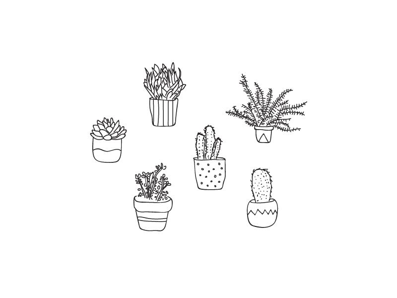 Leadplants art fun leadpages plants illustration