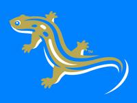 Salamanders Cap Mark